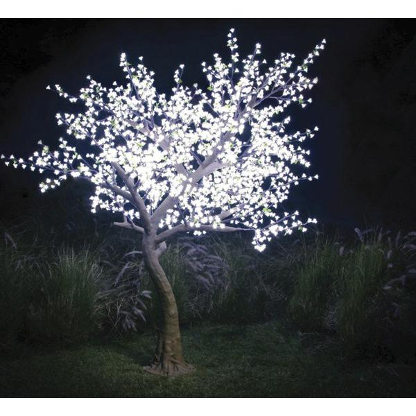 Light_Garden_Illuminated_Tree
